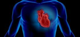 هولوگرام در صنعت قلب و عروق